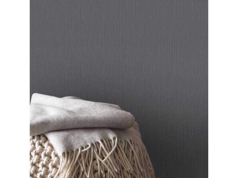 Papier peint intissé uni line gris foncé 1005 x 106cm