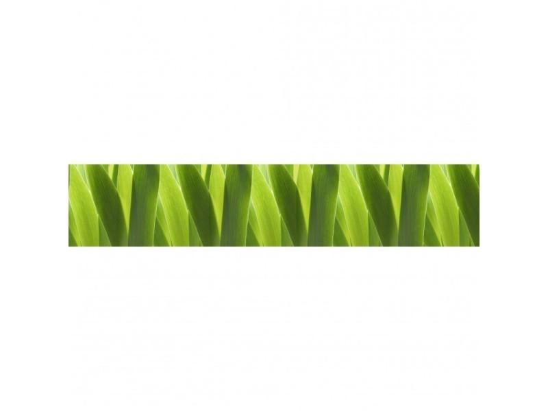 Brise vue 100% occultant vert tendre 500 x 100 cm - canisse brise vent pour clôture de jardin