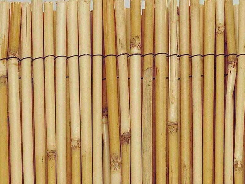 Intermas - brise vue en roseau 75% occultant 1,5 x 5 m reedcane 170971