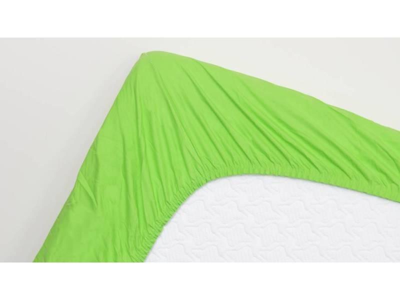 Snoozing - drap-housse en satin de coton - 140x220 cm - lime SMUL102166712