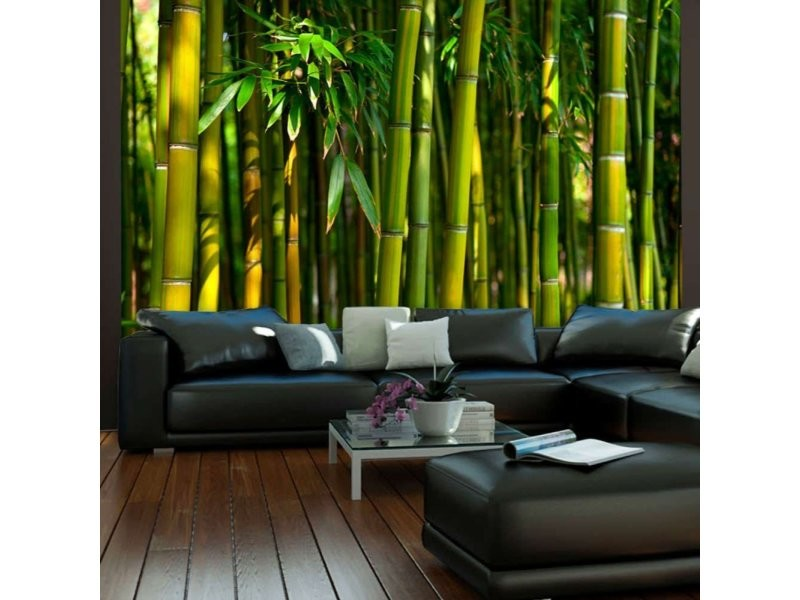 Papier peint forêt de bambous asiatique A1-XLFTNT0090