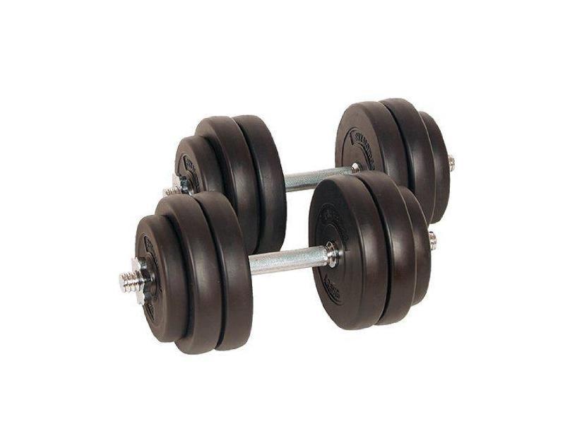 Lot de 2 haltères courts poids 30 kg (2 x 15 kg) avec disques set musculation fitness biceps helloshop26 0701156