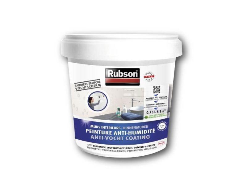 Peinture - vernis - traitement (lasure - effets decoratifs) peinture anti-humidité interieure blanc 0.75l
