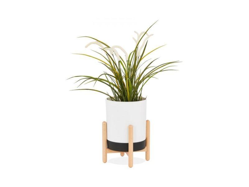 Pot de fleur zinnia blanc