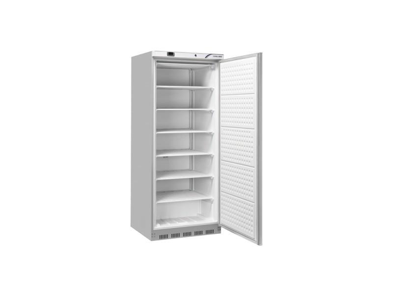 Armoire réfrigérée négative 600 l - inox - cool head - r290 1 porte pleine